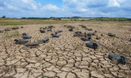 The Drought in Wichita Falls by Samuel Underwood