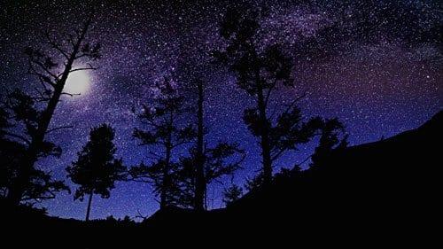 Under the Stars by Joseph Benedict